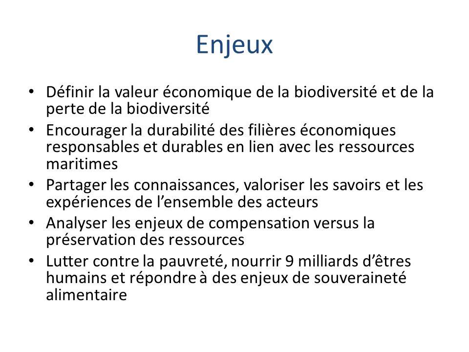 Enjeux Définir la valeur économique de la biodiversité et de la perte de la biodiversité Encourager la durabilité des filières économiques responsable