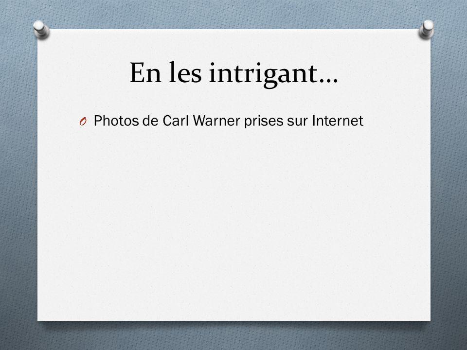 En les intrigant… O Photos de Carl Warner prises sur Internet