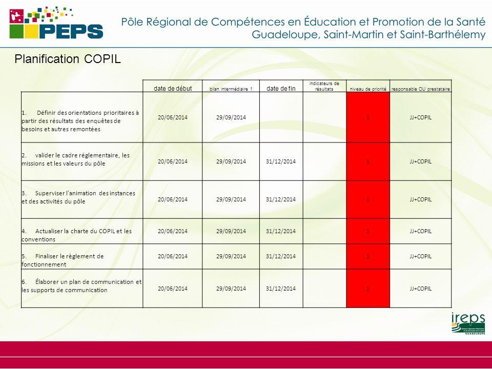 Planification COPIL date de début bilan intermédiaire 1 date de fin indicateurs de résultatsniveau de prioritéresponsable OU prestataire 1. Définir de