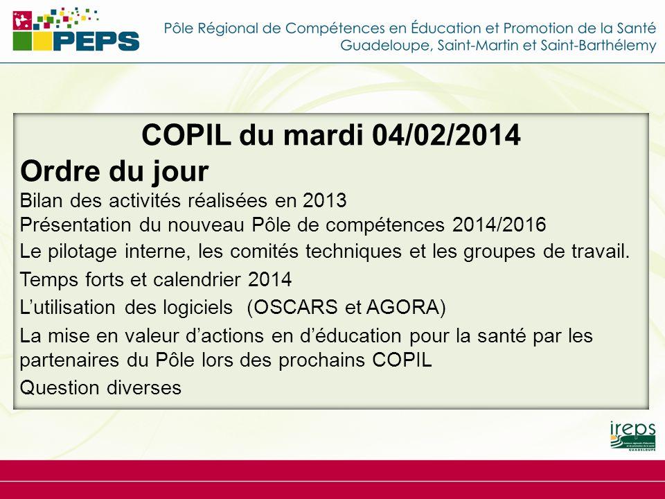 COPIL du mardi 04/02/2014 Ordre du jour Bilan des activités réalisées en 2013 Présentation du nouveau Pôle de compétences 2014/2016 Le pilotage intern