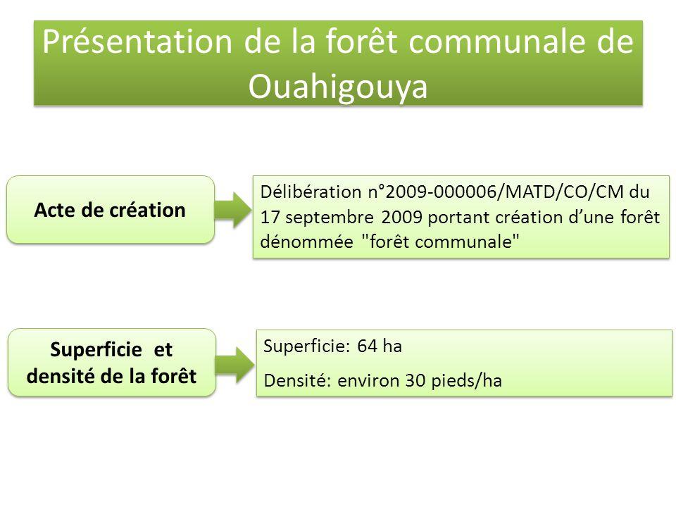 Présentation de la forêt communale de Ouahigouya Superficie et densité de la forêt Superficie: 64 ha Densité: environ 30 pieds/ha Superficie: 64 ha Densité: environ 30 pieds/ha Acte de création Délibération n°2009-000006/MATD/CO/CM du 17 septembre 2009 portant création dune forêt dénommée forêt communale