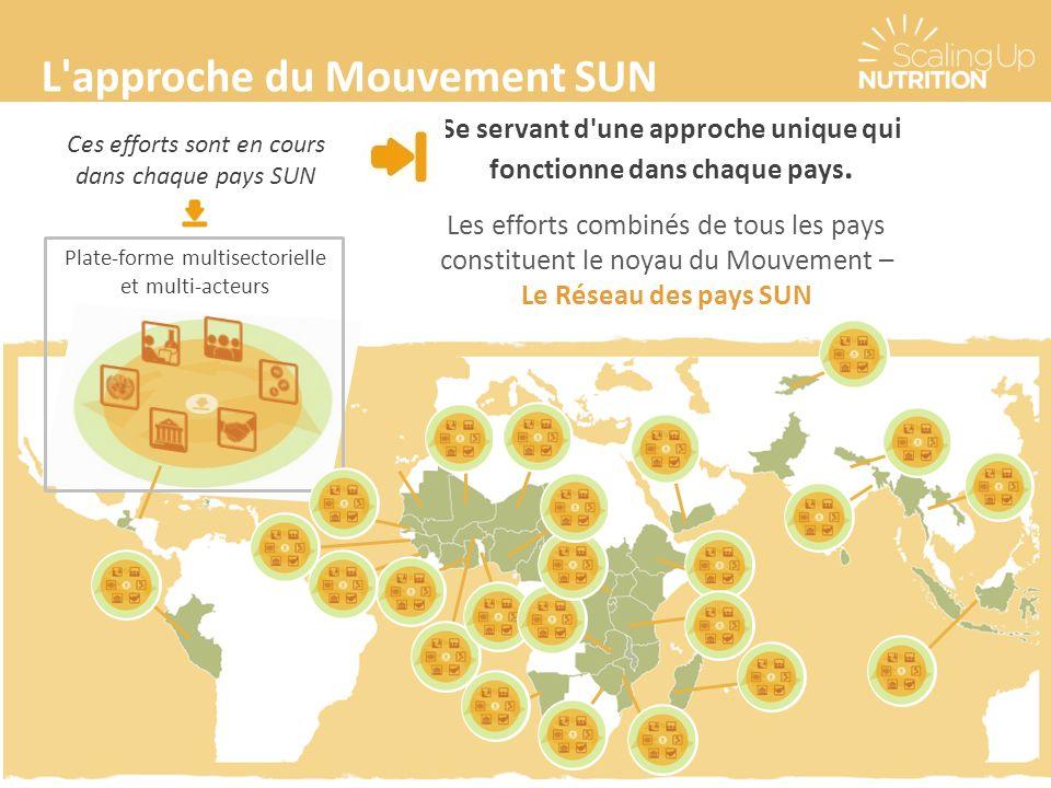 L approche du Mouvement SUN Se servant d une approche unique qui fonctionne dans chaque pays.