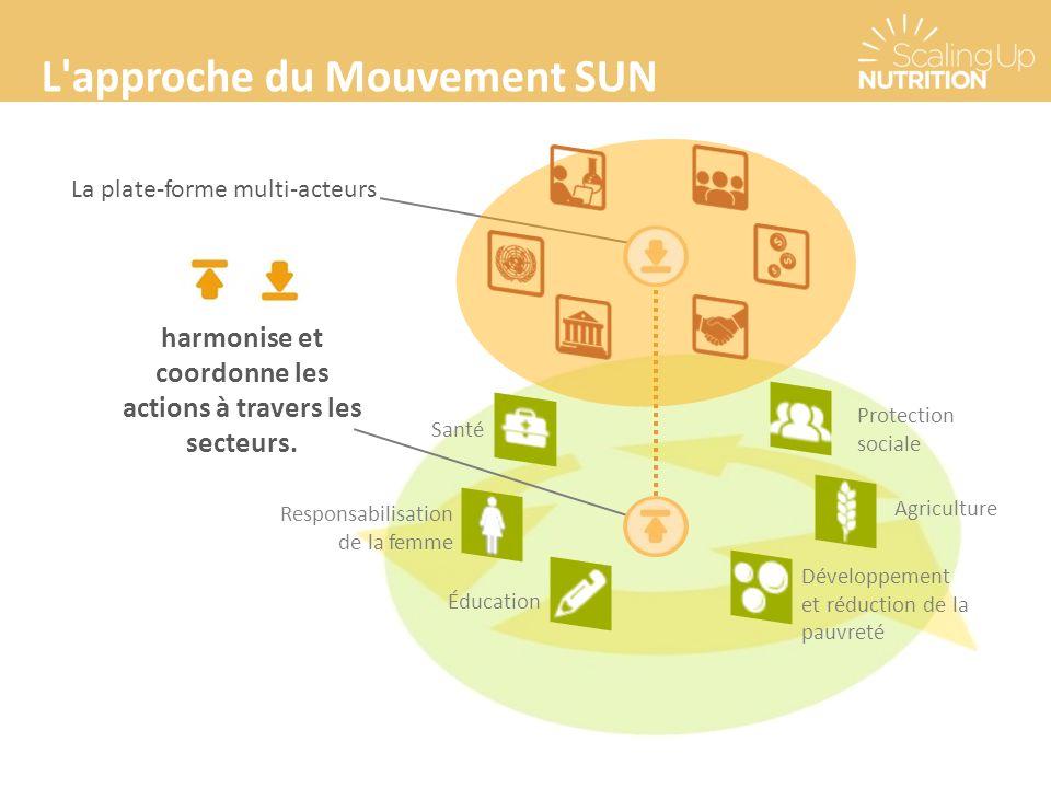 L approche du Mouvement SUN La plate-forme multi-acteurs harmonise et coordonne les actions à travers les secteurs.