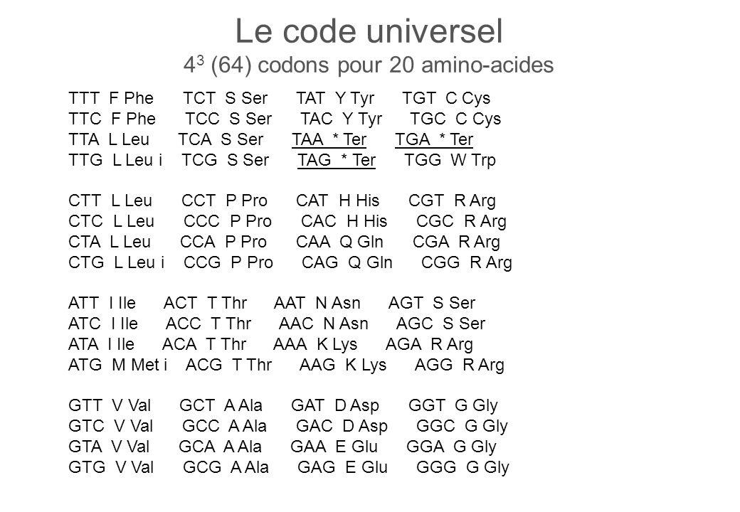 Le code universel 4 3 (64) codons pour 20 amino-acides TTT F Phe TCT S Ser TAT Y Tyr TGT C Cys TTC F Phe TCC S Ser TAC Y Tyr TGC C Cys TTA L Leu TCA S Ser TAA * Ter TGA * Ter TTG L Leu i TCG S Ser TAG * Ter TGG W Trp CTT L Leu CCT P Pro CAT H His CGT R Arg CTC L Leu CCC P Pro CAC H His CGC R Arg CTA L Leu CCA P Pro CAA Q Gln CGA R Arg CTG L Leu i CCG P Pro CAG Q Gln CGG R Arg ATT I Ile ACT T Thr AAT N Asn AGT S Ser ATC I Ile ACC T Thr AAC N Asn AGC S Ser ATA I Ile ACA T Thr AAA K Lys AGA R Arg ATG M Met i ACG T Thr AAG K Lys AGG R Arg GTT V Val GCT A Ala GAT D Asp GGT G Gly GTC V Val GCC A Ala GAC D Asp GGC G Gly GTA V Val GCA A Ala GAA E Glu GGA G Gly GTG V Val GCG A Ala GAG E Glu GGG G Gly