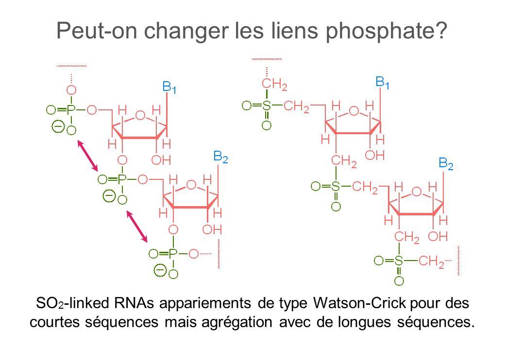 Peut-on changer les liens phosphate.
