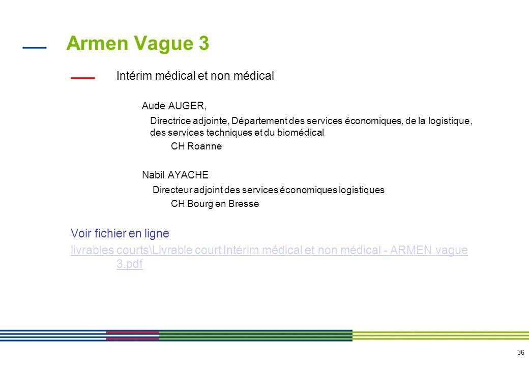 36 Armen Vague 3 Intérim médical et non médical Aude AUGER, Directrice adjointe, Département des services économiques, de la logistique, des services