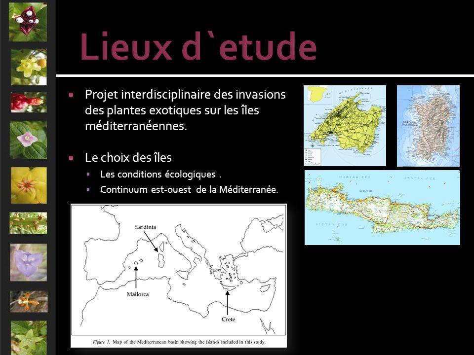 Projet interdisciplinaire des invasions des plantes exotiques sur les îles méditerranéennes.