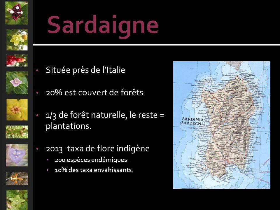 Située près de lItalie 20% est couvert de forêts 1/3 de forêt naturelle, le reste = plantations.