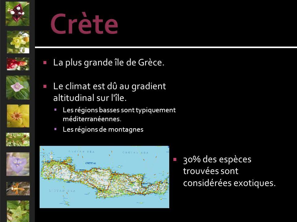 La plus grande île de Grèce. Le climat est dû au gradient altitudinal sur l île.
