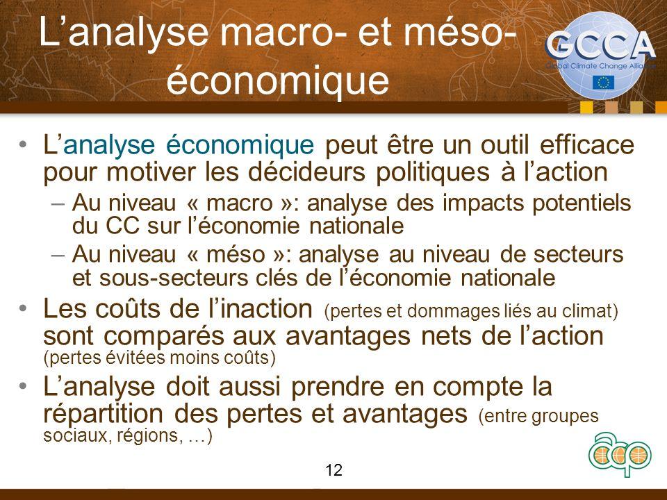 Lanalyse macro- et méso- économique Lanalyse économique peut être un outil efficace pour motiver les décideurs politiques à laction –Au niveau « macro »: analyse des impacts potentiels du CC sur léconomie nationale –Au niveau « méso »: analyse au niveau de secteurs et sous-secteurs clés de léconomie nationale Les coûts de linaction (pertes et dommages liés au climat) sont comparés aux avantages nets de laction (pertes évitées moins coûts) Lanalyse doit aussi prendre en compte la répartition des pertes et avantages (entre groupes sociaux, régions, …) 12