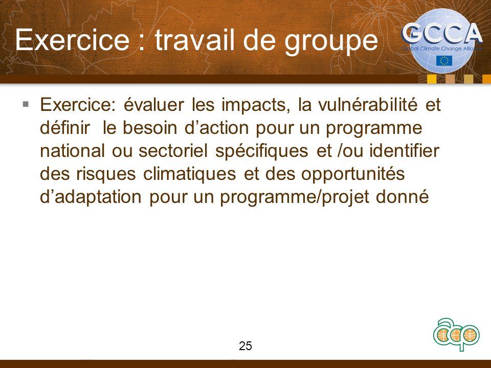Exercice : travail de groupe Exercice: évaluer les impacts, la vulnérabilité et définir le besoin daction pour un programme national ou sectoriel spécifiques et /ou identifier des risques climatiques et des opportunités dadaptation pour un programme/projet donné 25