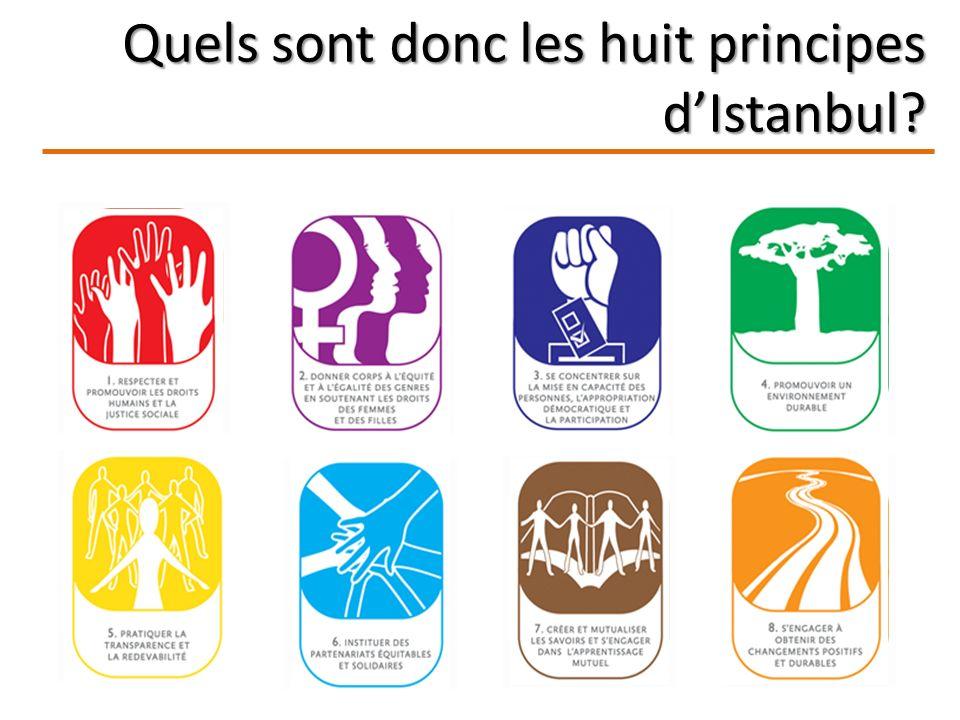 Quels sont donc les huit principes dIstanbul