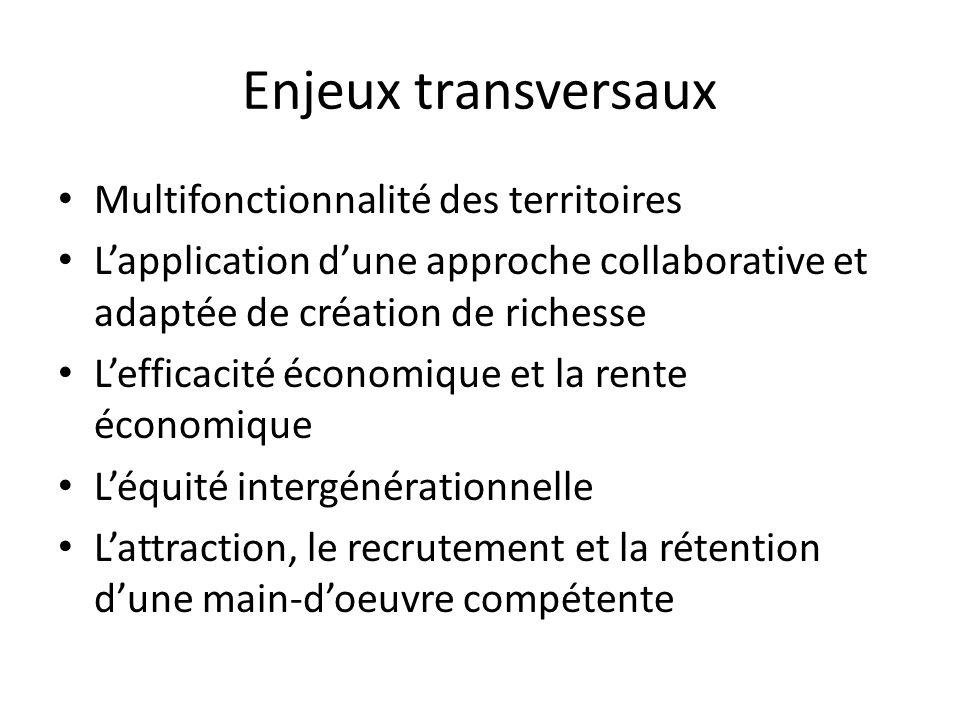 Enjeux transversaux Multifonctionnalité des territoires Lapplication dune approche collaborative et adaptée de création de richesse Lefficacité économ