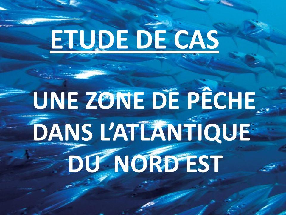 « La pêche en mer est libre, car il est impossible den épuiser les richesses » Grotius, Mare Liberum, 1609..