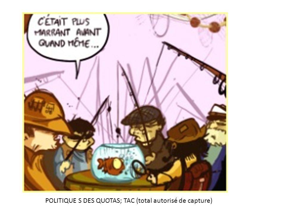 POLITIQUE S DES QUOTAS; TAC (total autorisé de capture)