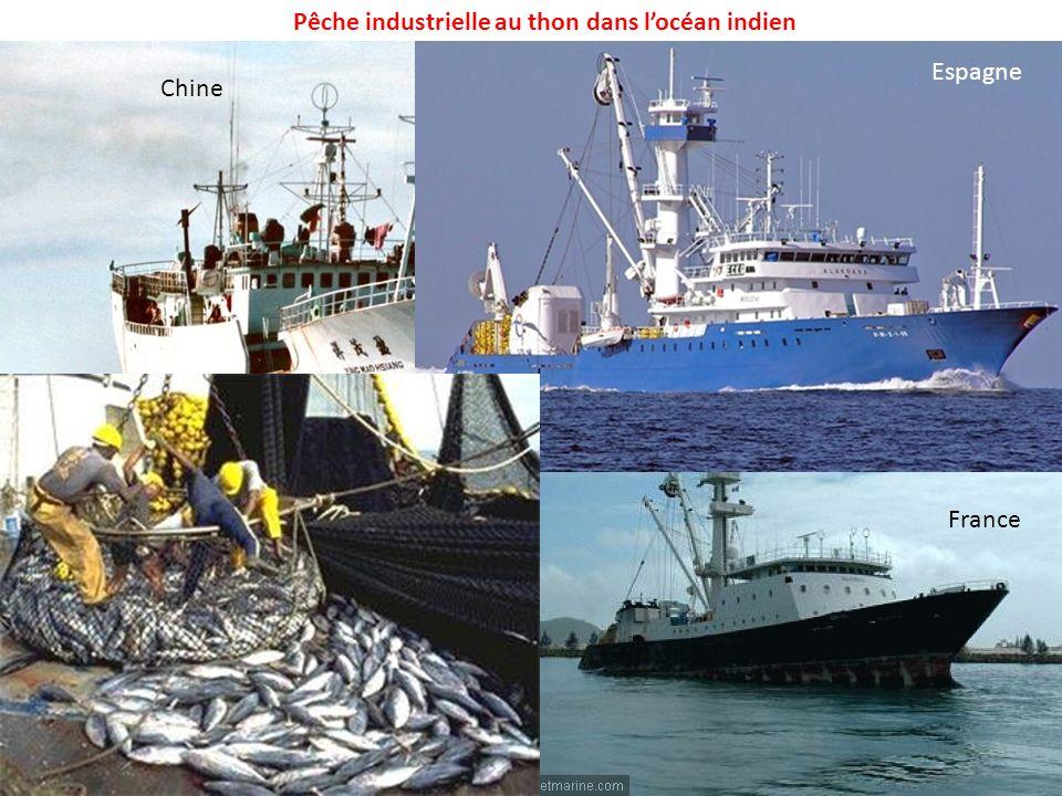 Pêche industrielle au thon dans locéan indien Chine France Espagne