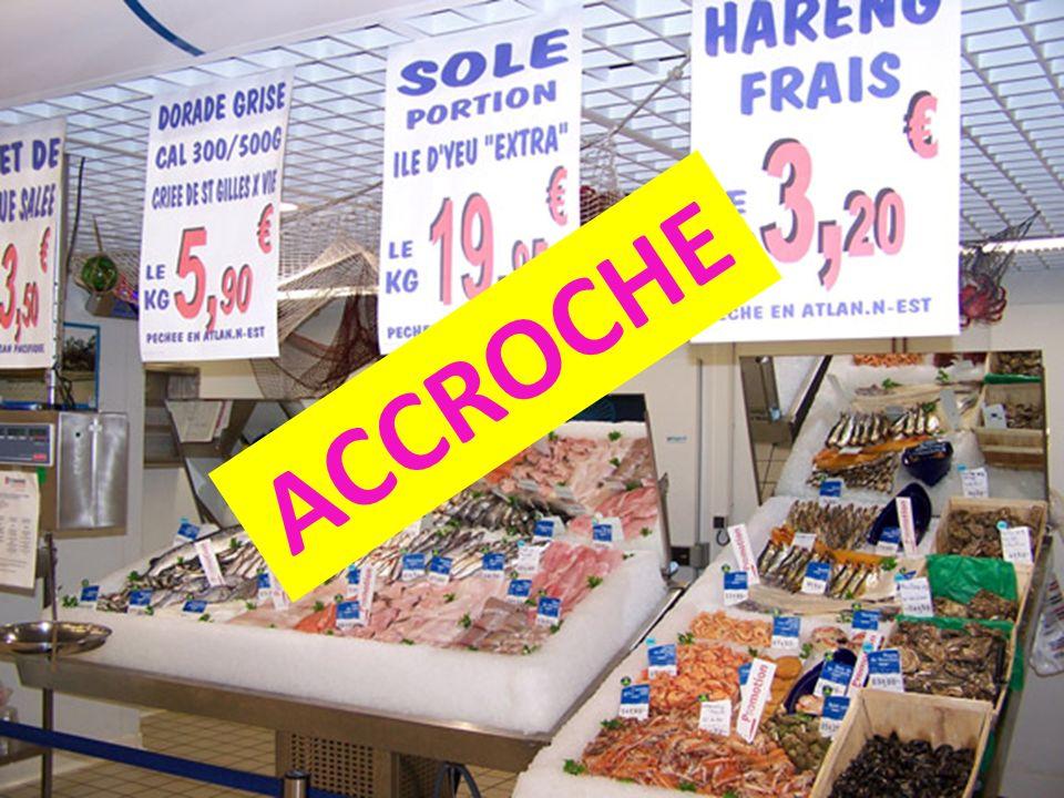 Sénat Proposition de règlement du conseil établissant un plan à long terme pour le stock danchois dans le golfe de Gascogne et les pêcheurs exploitant ce stock.