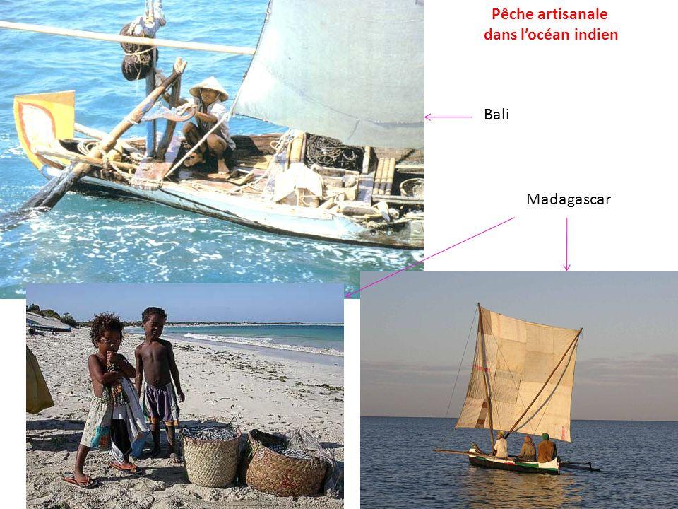 Pêche artisanale dans locéan indien Bali Madagascar