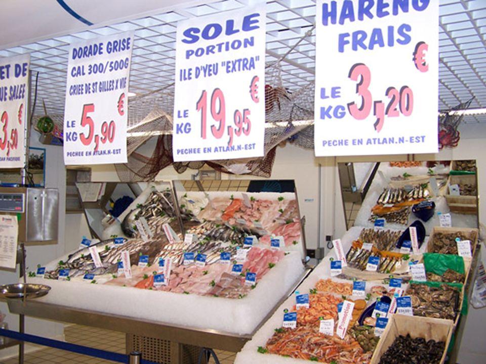Parlement européen commission de la pêche 8/10/2009 (projet de rapport) La pêche à lanchois dans le golfe de Gascogne, dans la zone VIII, revêt une importance sociale et économique considérable.