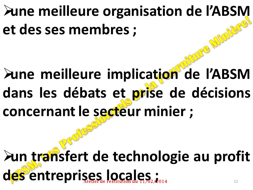 une meilleure organisation de lABSM et des ses membres ; une meilleure implication de lABSM dans les débats et prise de décisions concernant le secteu