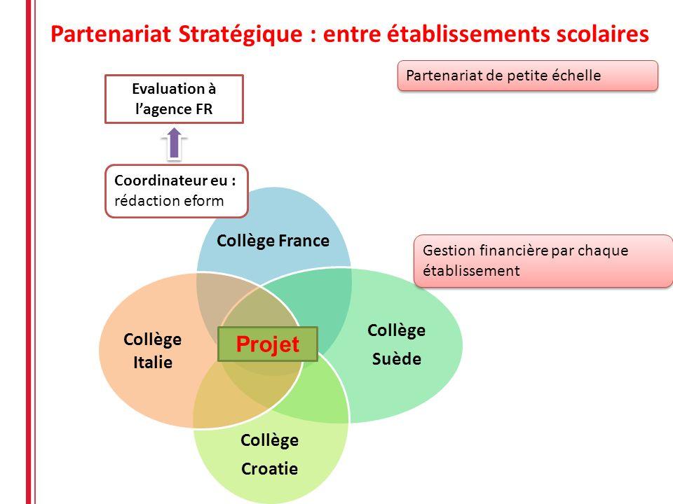 Partenariat Stratégique : entre établissements scolaires Collège France Collège Suède Collège Croatie Collège Italie Projet Partenariat de petite éche