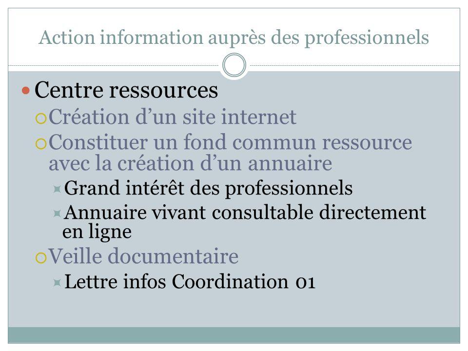 Action information auprès des professionnels Centre ressources Création dun site internet Constituer un fond commun ressource avec la création dun ann