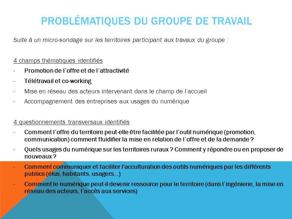 PROBLÉMATIQUES DU GROUPE DE TRAVAIL Suite à un micro-sondage sur les territoires participant aux travaux du groupe : 4 champs thématiques identifiés -