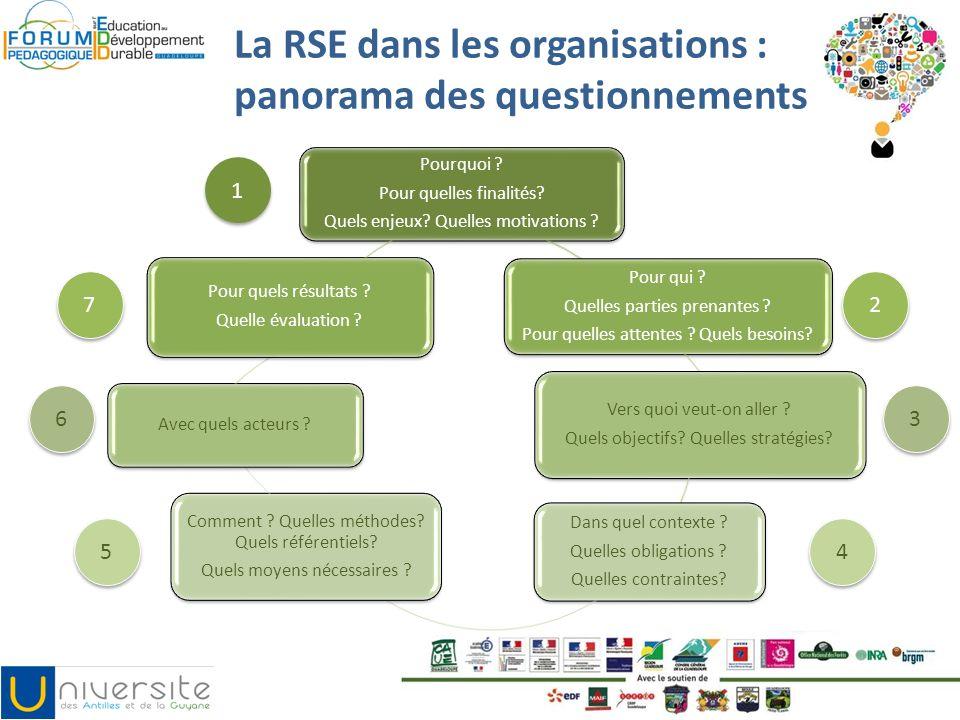 La RSE dans les organisations : panorama des questionnements Pourquoi ? Pour quelles finalités? Quels enjeux? Quelles motivations ? Pour qui ? Quelles
