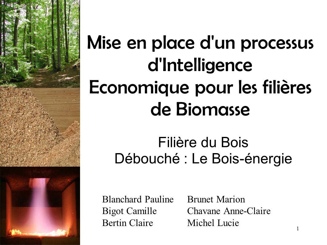 Mise en place d'un processus d'Intelligence Economique pour les filières de Biomasse Filière du Bois Débouché : Le Bois-énergie 1 Blanchard Pauline Bi
