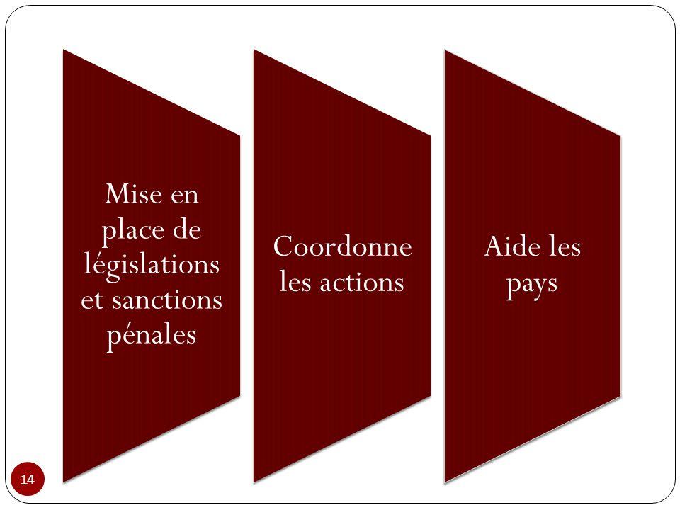 Mise en place de législations et sanctions pénales Coordonne les actions Aide les pays 14