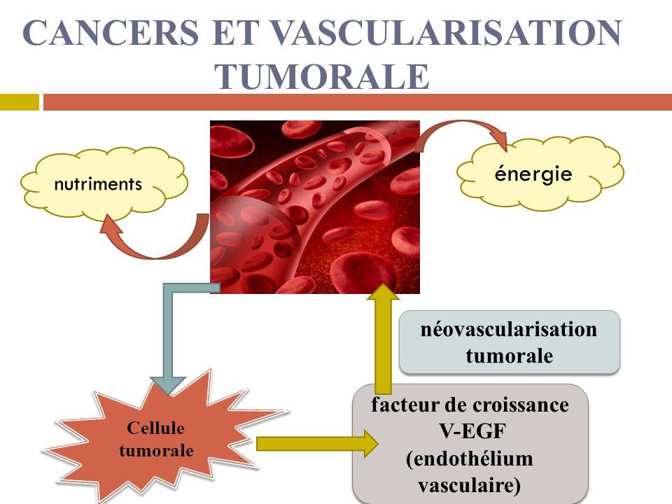 CANCERS ET VASCULARISATION TUMORALE nutriments énergie Cellule tumorale facteur de croissance V-EGF (endothélium vasculaire) facteur de croissance V-EGF (endothélium vasculaire) néovascularisation tumorale