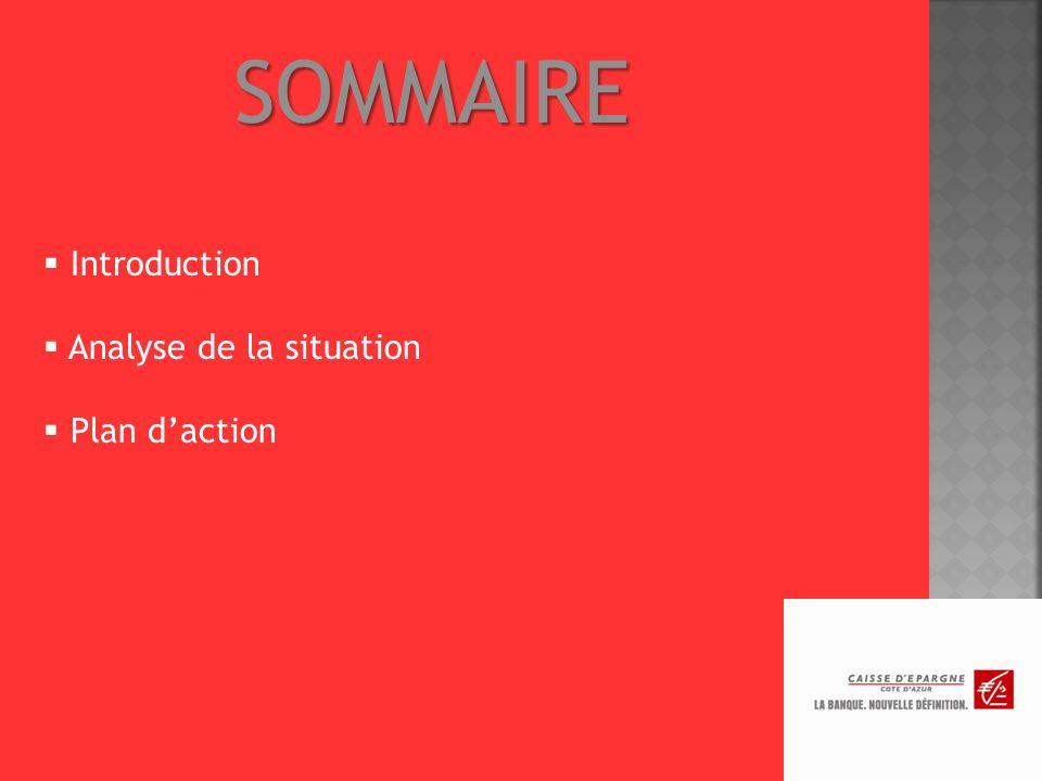 SOMMAIRE Introduction Analyse de la situation Plan daction