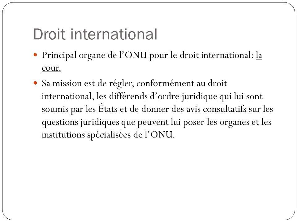 Droit international Principal organe de lONU pour le droit international: la cour. Sa mission est de régler, conformément au droit international, les