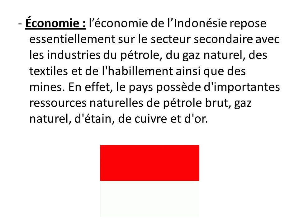 - Économie : léconomie de lIndonésie repose essentiellement sur le secteur secondaire avec les industries du pétrole, du gaz naturel, des textiles et