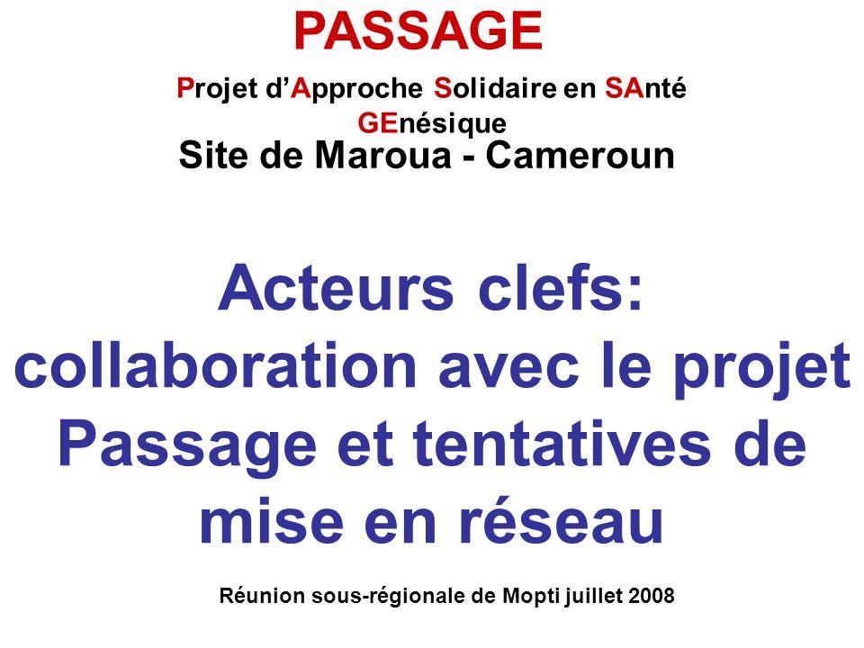 Acteurs clefs: collaboration avec le projet Passage et tentatives de mise en réseau Réunion sous-régionale de Mopti juillet 2008 PASSAGE Projet dAppro
