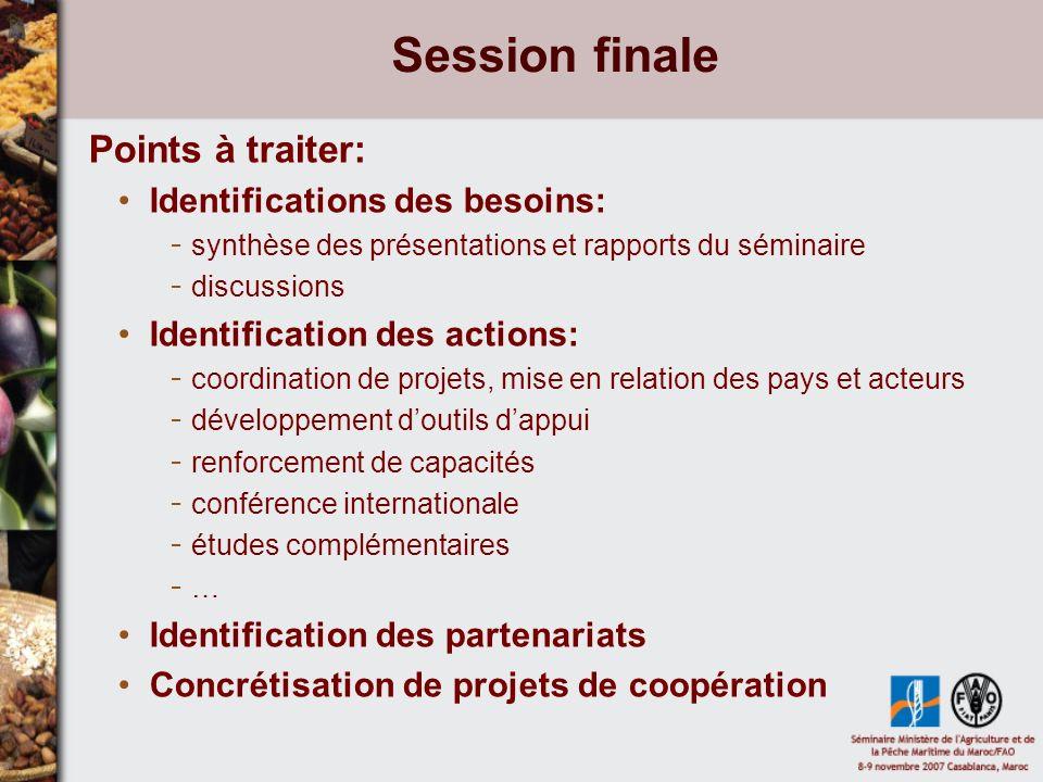 Session finale Points à traiter: Identifications des besoins: - synthèse des présentations et rapports du séminaire - discussions Identification des actions: - coordination de projets, mise en relation des pays et acteurs - développement doutils dappui - renforcement de capacités - conférence internationale - études complémentaires - … Identification des partenariats Concrétisation de projets de coopération