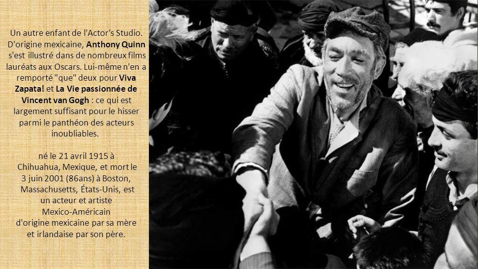 La force et l'élégance par excellence. Avec ses cascades impressionnantes et ses cris de guerre mythiques, Bruce Lee a donné ses lettres de noblesse a