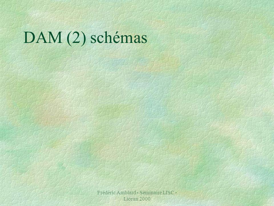 Frédéric Amblard - Séminaire LISC - Lioran 2000 DAM (2) schémas