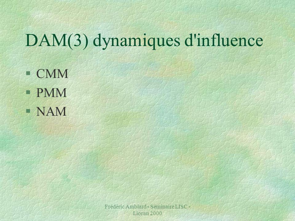 Frédéric Amblard - Séminaire LISC - Lioran 2000 DAM(3) dynamiques d influence §CMM §PMM §NAM