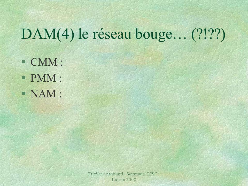 Frédéric Amblard - Séminaire LISC - Lioran 2000 DAM(4) le réseau bouge… ( ! ) §CMM : §PMM : §NAM :