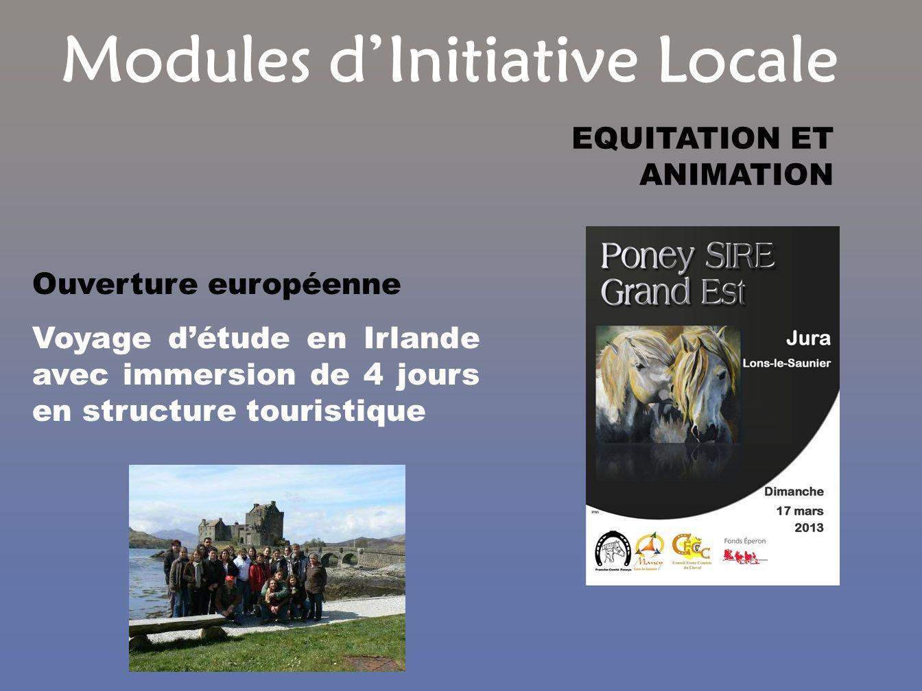 Modules dInitiative Locale Ouverture européenne Voyage détude en Irlande avec immersion de 4 jours en structure touristique EQUITATION ET ANIMATION