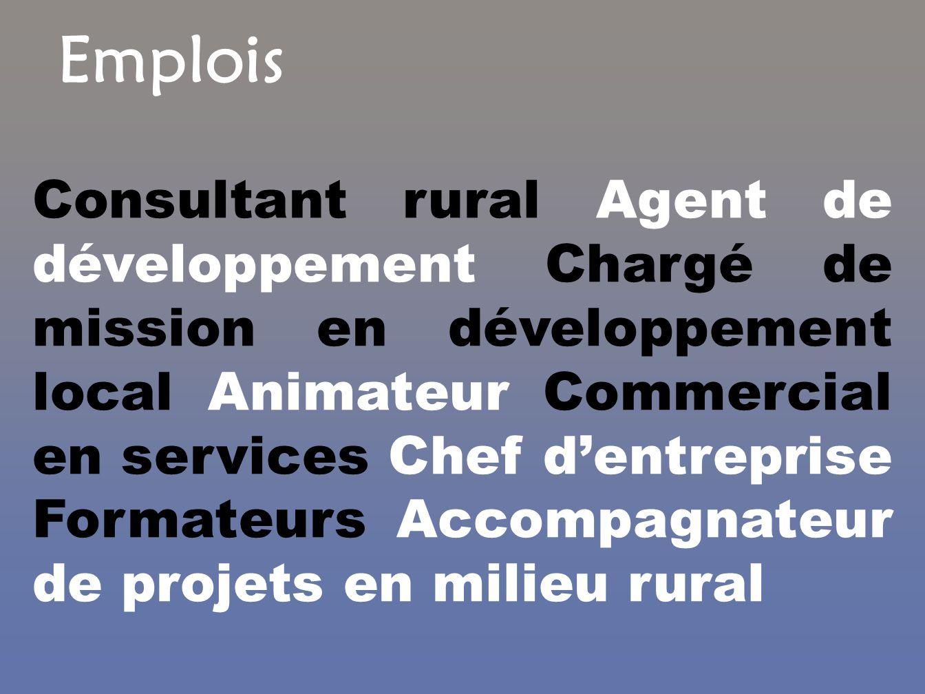 Emplois Consultant rural Agent de développement Chargé de mission en développement local Animateur Commercial en services Chef dentreprise Formateurs