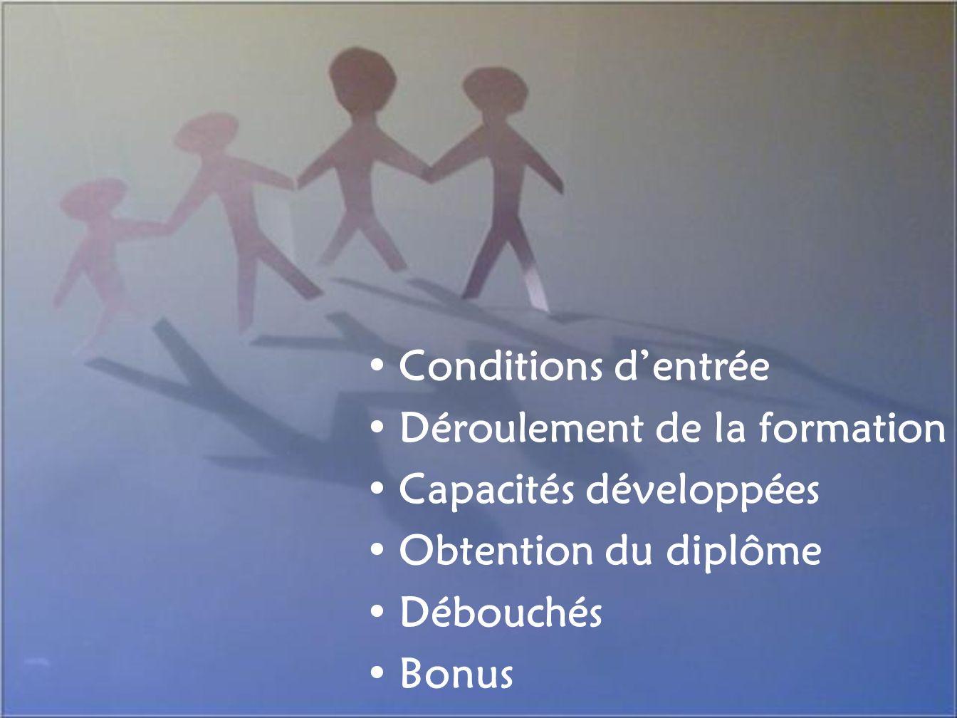 Conditions dentrée Déroulement de la formation Capacités développées Obtention du diplôme Débouchés Bonus