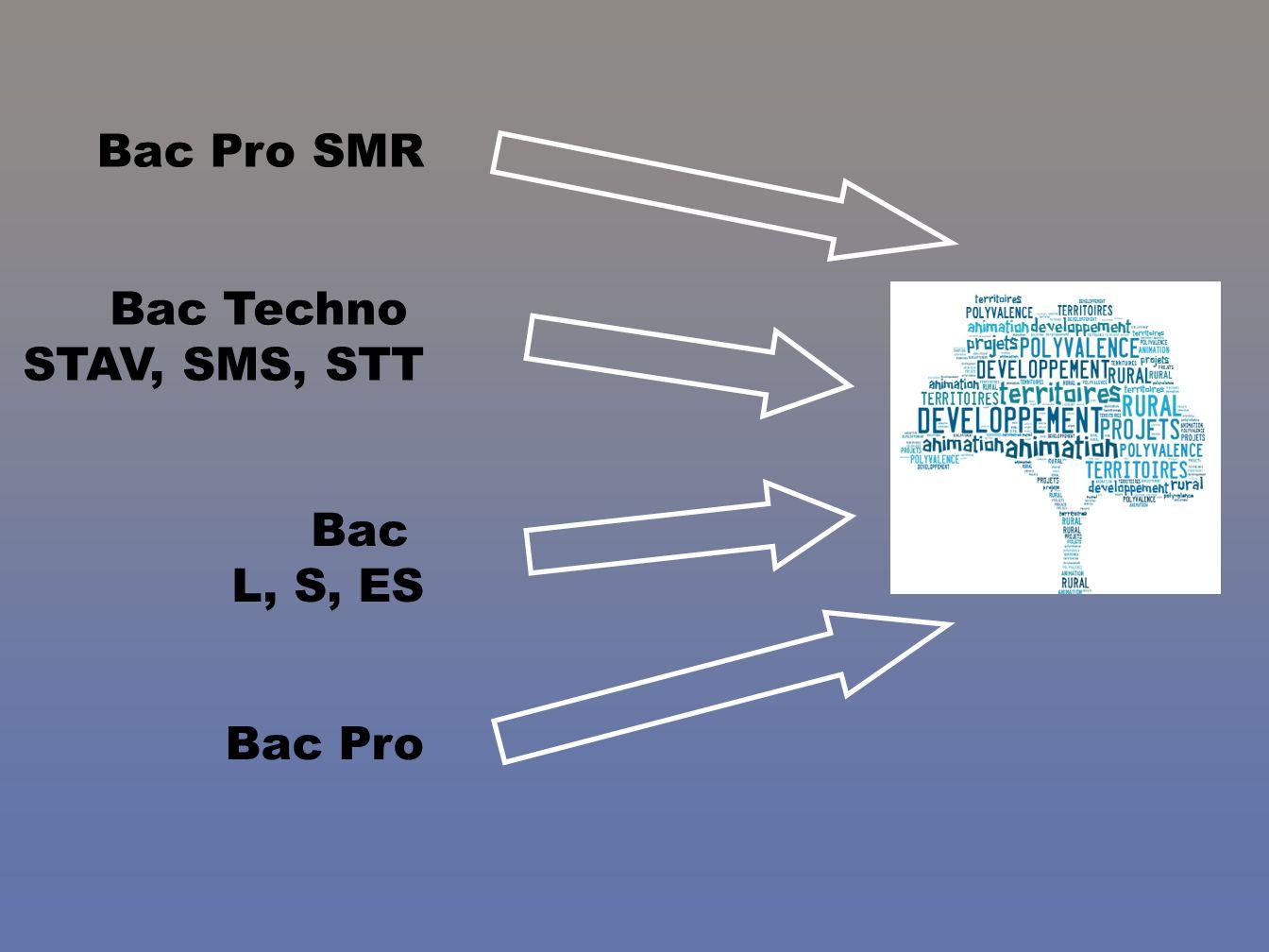 Bac Pro SMR Bac Techno STAV, SMS, STT Bac L, S, ES Bac Pro