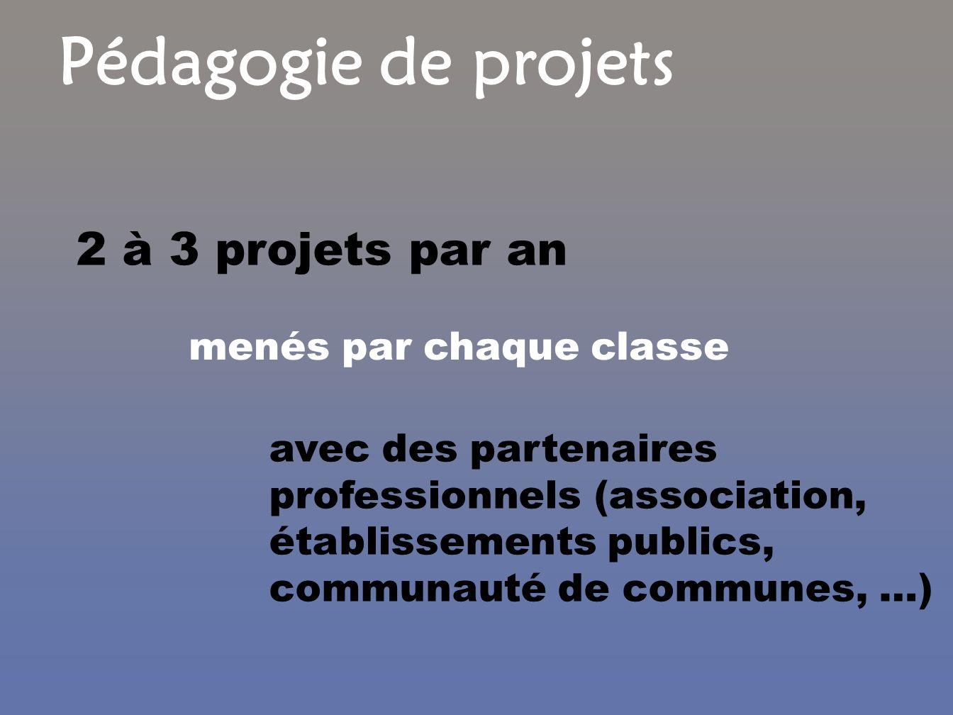 2 à 3 projets par an avec des partenaires professionnels (association, établissements publics, communauté de communes, …) menés par chaque classe Péda