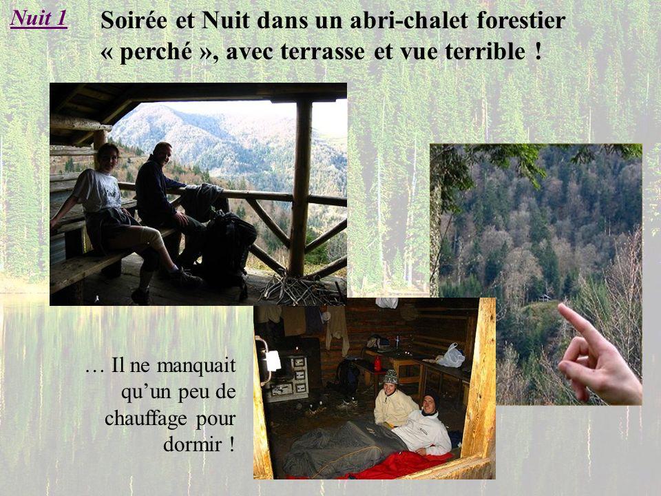 Soirée et Nuit dans un abri-chalet forestier « perché », avec terrasse et vue terrible ! Nuit 1 … Il ne manquait quun peu de chauffage pour dormir !