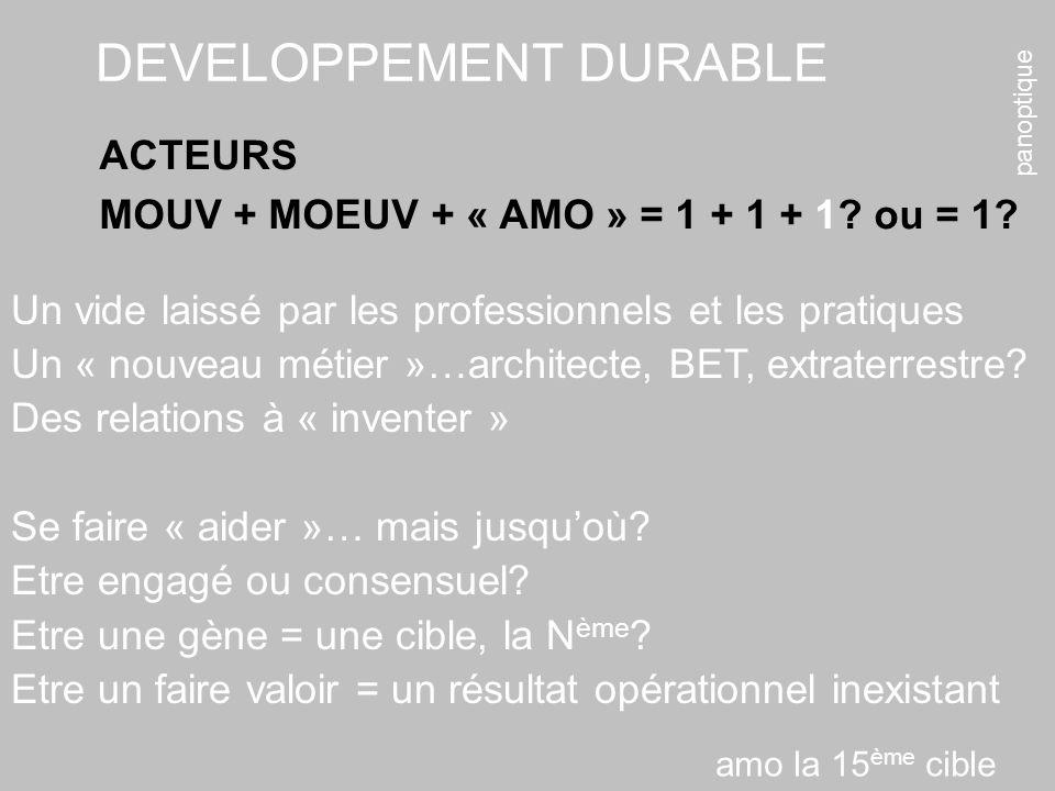 panoptique DEVELOPPEMENT DURABLE ACTEURS MOUV + MOEUV + « AMO » = 1 + 1 + 1? ou = 1? Un vide laissé par les professionnels et les pratiques Un « nouve
