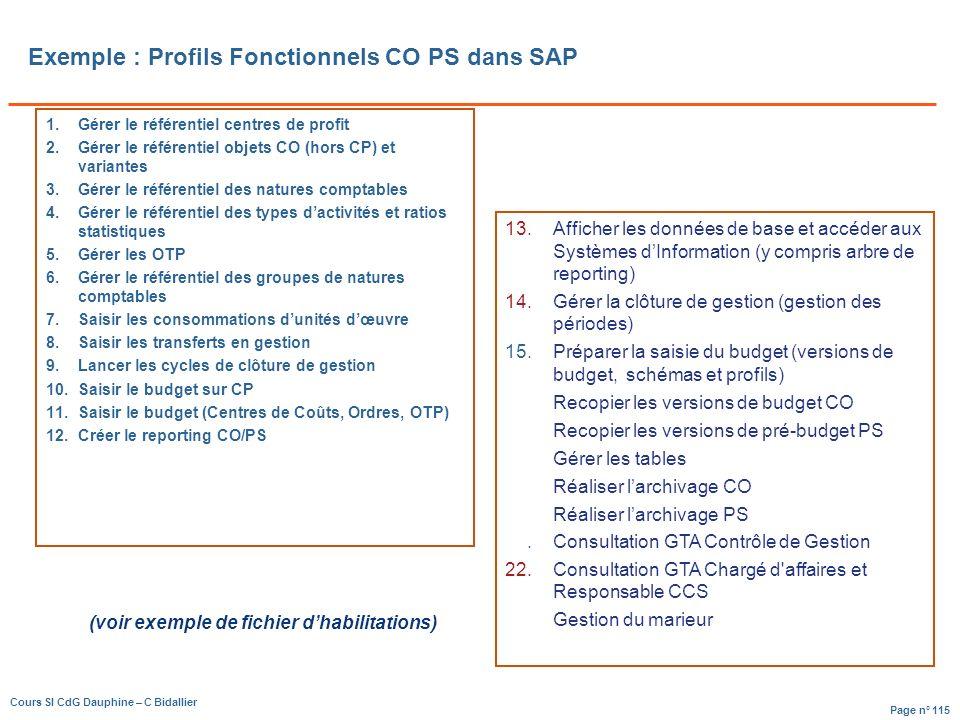 Page n° 115 Cours SI CdG Dauphine – C Bidallier Exemple : Profils Fonctionnels CO PS dans SAP 1.Gérer le référentiel centres de profit 2.Gérer le référentiel objets CO (hors CP) et variantes 3.Gérer le référentiel des natures comptables 4.Gérer le référentiel des types dactivités et ratios statistiques 5.Gérer les OTP 6.Gérer le référentiel des groupes de natures comptables 7.Saisir les consommations dunités dœuvre 8.Saisir les transferts en gestion 9.Lancer les cycles de clôture de gestion 10.Saisir le budget sur CP 11.Saisir le budget (Centres de Coûts, Ordres, OTP) 12.Créer le reporting CO/PS 13.Afficher les données de base et accéder aux Systèmes dInformation (y compris arbre de reporting) 14.Gérer la clôture de gestion (gestion des périodes) 15.Préparer la saisie du budget (versions de budget, schémas et profils) 16.Recopier les versions de budget CO 17.Recopier les versions de pré-budget PS 18.Gérer les tables 19.Réaliser larchivage CO 20.Réaliser larchivage PS 21.Consultation GTA Contrôle de Gestion 22.Consultation GTA Chargé d affaires et Responsable CCS 24.