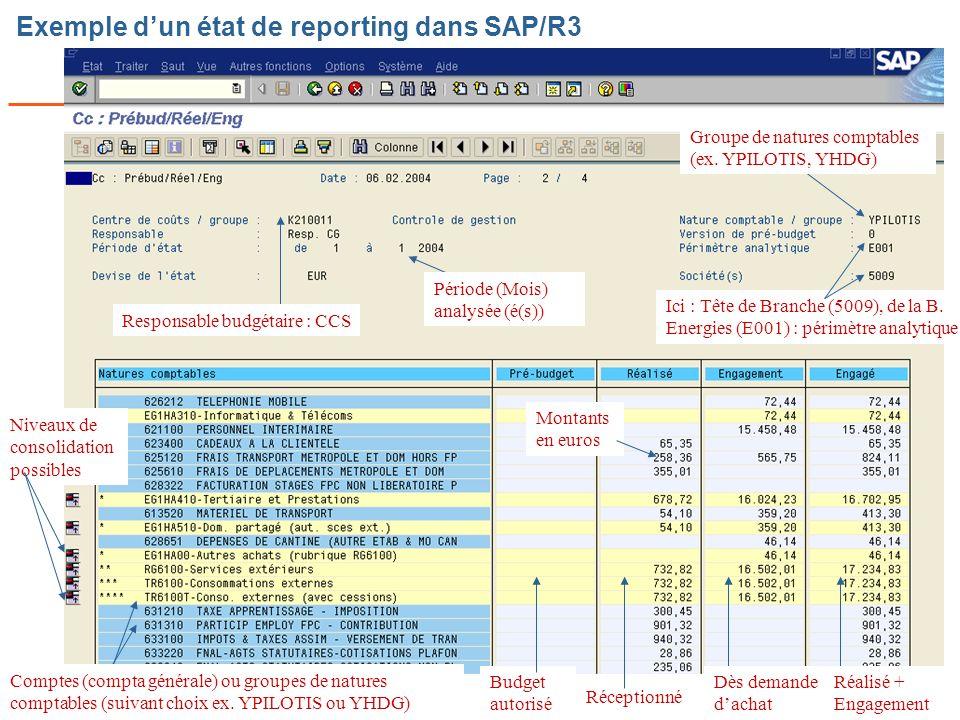Page n° 62 Cours SI CdG Dauphine – C Bidallier Exemple dun état de reporting dans SAP/R3 Responsable budgétaire : CCS Période (Mois) analysée (é(s)) Groupe de natures comptables (ex.