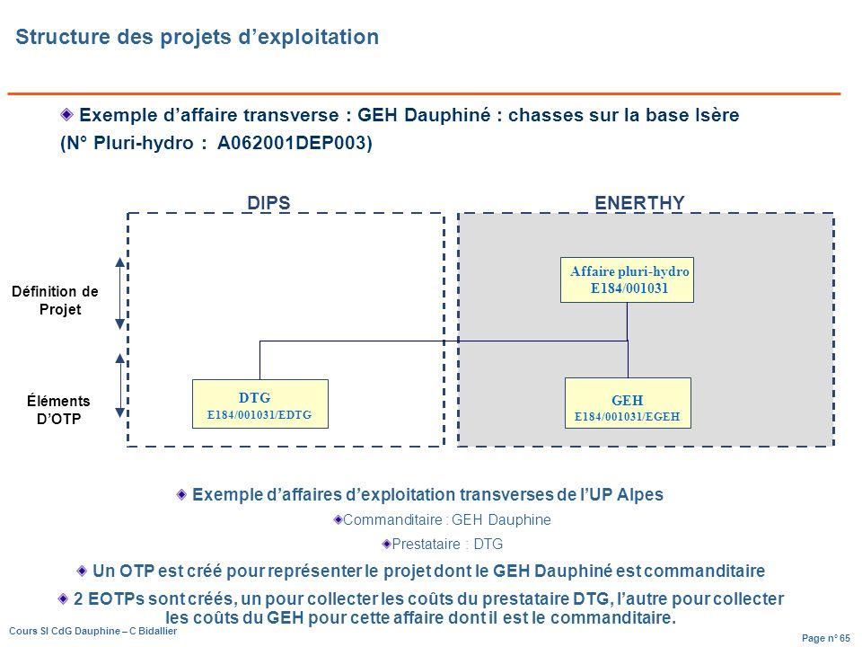 Page n° 65 Cours SI CdG Dauphine – C Bidallier Affaire pluri-hydro E184/001031 GEH E184/001031/EGEH Définition de Projet Éléments DOTP DTG E184/001031/EDTG DIPSENERTHY Structure des projets dexploitation Exemple daffaire transverse : GEH Dauphiné : chasses sur la base Isère (N° Pluri-hydro : A062001DEP003) Exemple daffaires dexploitation transverses de lUP Alpes Commanditaire : GEH Dauphine Prestataire : DTG Un OTP est créé pour représenter le projet dont le GEH Dauphiné est commanditaire 2 EOTPs sont créés, un pour collecter les coûts du prestataire DTG, lautre pour collecter les coûts du GEH pour cette affaire dont il est le commanditaire.